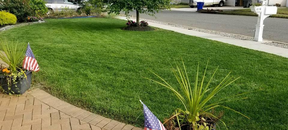 Fertilized Lawn in Toms River, NJ